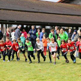 Waldlauf-Kreismeisterschaften in Rheinbischofsheim